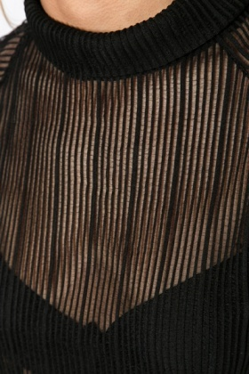 Sheer Stripe Roll Neck Top