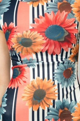 Floral Striped Dress