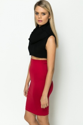 Cowl Neck Crop Knit Top