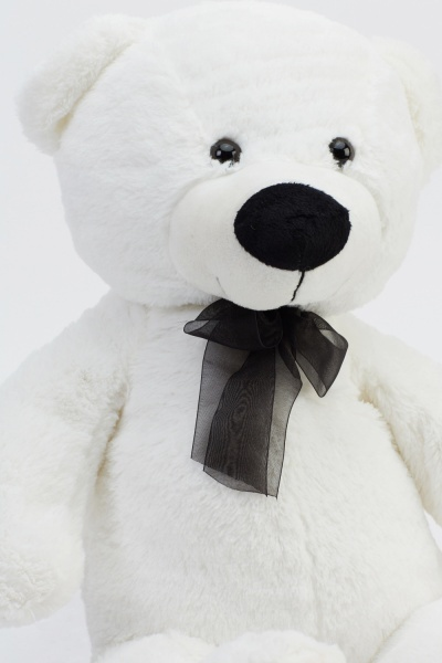 White Stuffed Teddy Bear