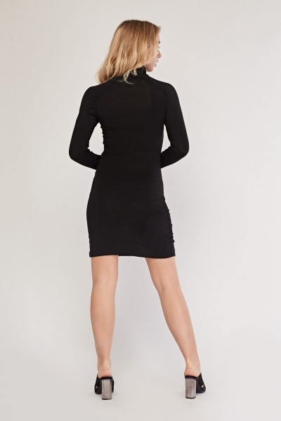 Ruched Side Roll Neck Rib Dress
