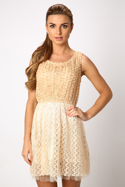 Rose Lace Skater Dress