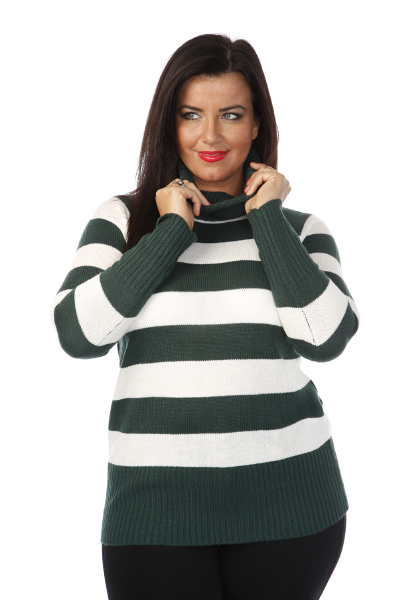 Roll Neck Stripey Pullover