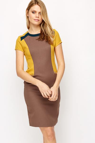 7b59483a63f Brown Colour Block Pencil Dress